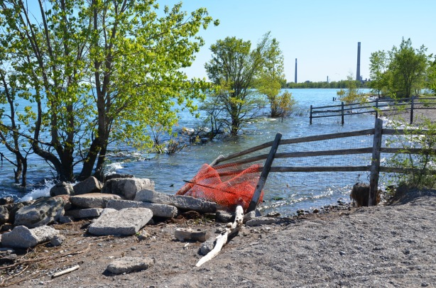 flooded beach, fences in water, remains of orange temporary fence, a tree in the water