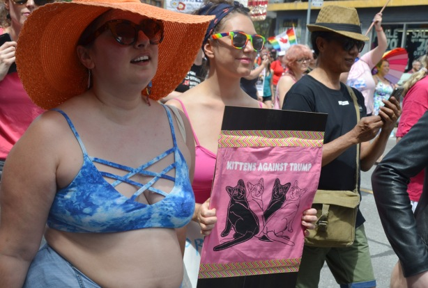 women in a dyke march, one is holding a sign that says kittens against trump