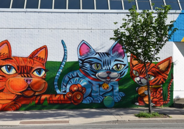 a cat and two kittens painted on a mural, one with a bell around its neck and two with little balls between their paws Uber5000 mural