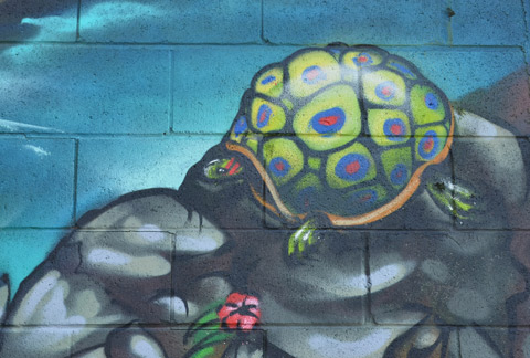 part of a large colourful mural by clandestinos smoky and shalak - a turtle on a rock