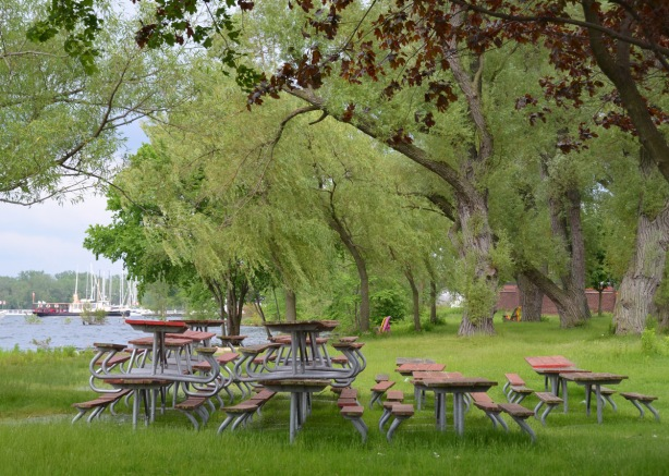 picnic tables are stacked in piles beside the water, willow trees and a red maple are also in the picture