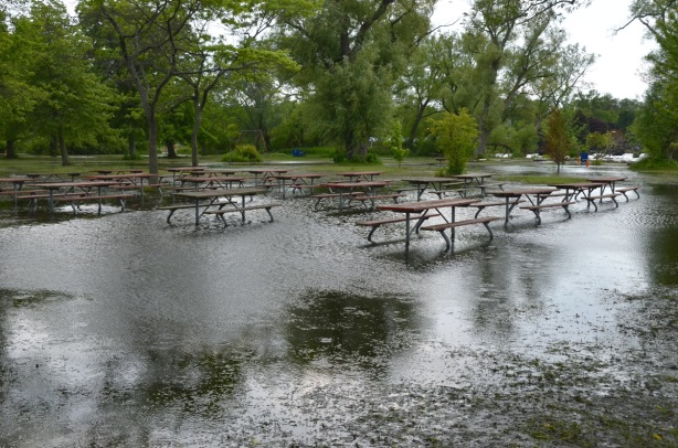 picnic tables in a flooded section of a park