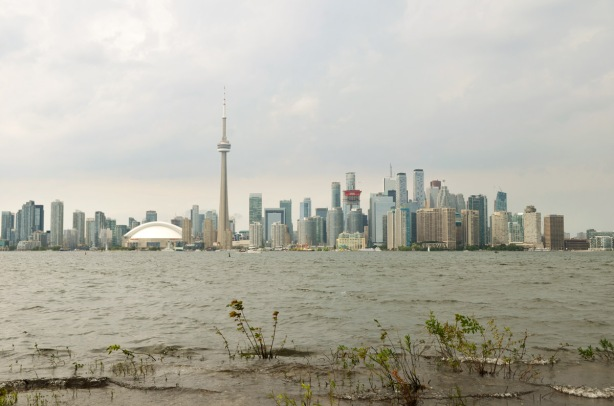 a few shrubs along the flooded shoreline of Centre Island in the foreground with the Toronto skyline across the Inner Channel, CN Tower, Rogers Centre and many condos and office towers.