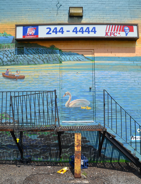 swan swimming in the lake, a mural on the back door of a KFC restaurant