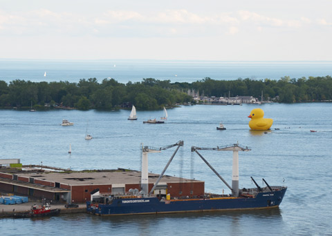 the large yellow rubber ducky is being towed across Toronto harbour