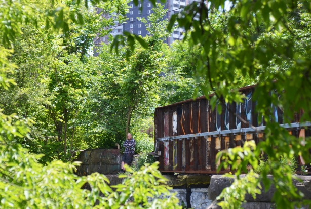 an old rusted side of a railway trestle bridge, lots of greenery from the trees growing around it, a man is standing at one end of the bridge, unused tracks