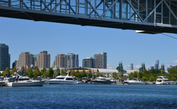 four or five very large yachts are moored in the harbour along Toronto's waterfront, highrises in the background