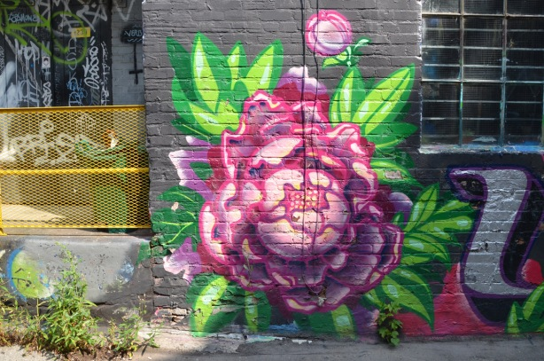 street art painting of a large pink peony