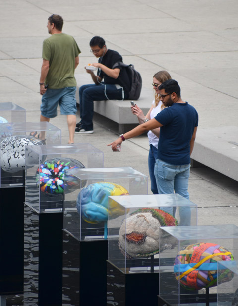 people looking at brain sculptures.  one is pointing to them, the other is taking a picture of them.