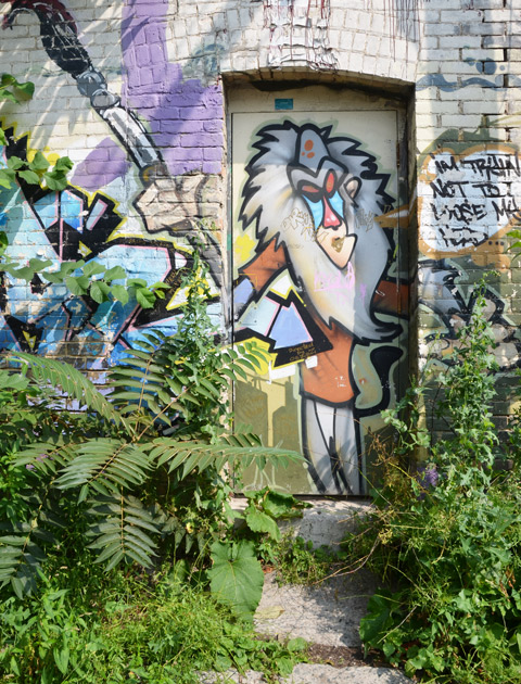 tall weeds and small shrubs grow in front of a painting of a lion (from the Lion King) painted on an unused doorway in an alley