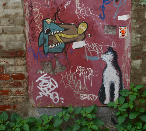 a tbonez urban ninja squadron pasteup of the ninja in the jaws of a shark, another paste up of a dog (cat?) is looking at the ninja