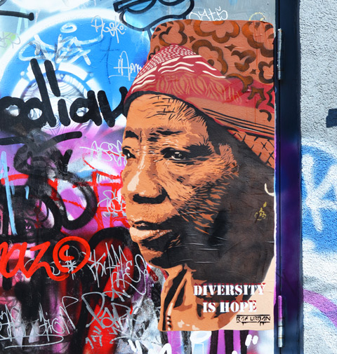 poster street art of a black woman's head and shoulders, 3/4 angle. She is wearing a head scarf that is patterned fabric wound round her head. The words on the poster say Diversity is Hope