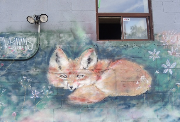 street art painting of a fuzzy orange fox, lying on the ground by C V Binns