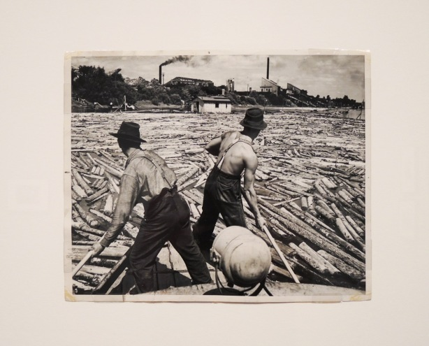 vintage black and white photo of two shirtless men on legs with poles as the move logs and timber by river to a newsprint paper mill on the other shore.