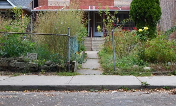 two overgrown front yards with a sidewalk down the middle, a semi divided brick house in the background.