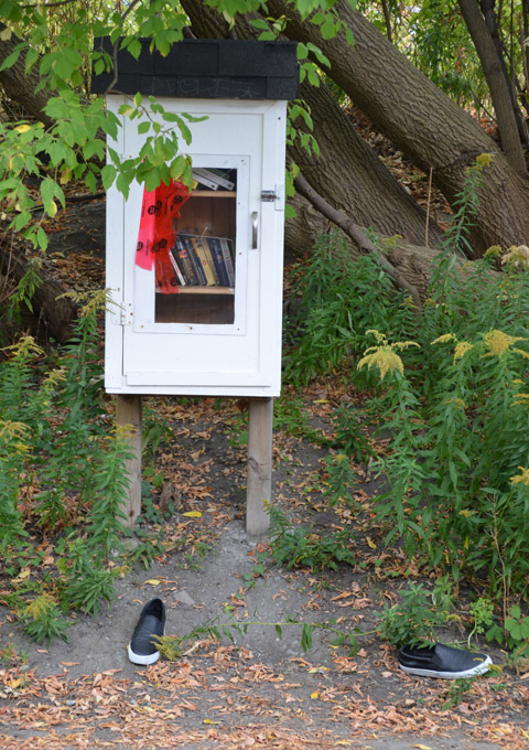 white box on stilts, a little free library, trees and shrubs around it, a pair of shoes on the sidewalk in front of it.