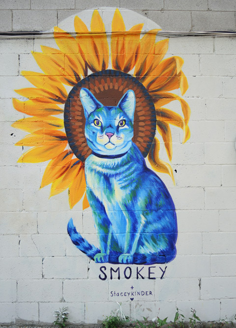 finished mural of Smokey the blue cat, with a sunflower behind his head,