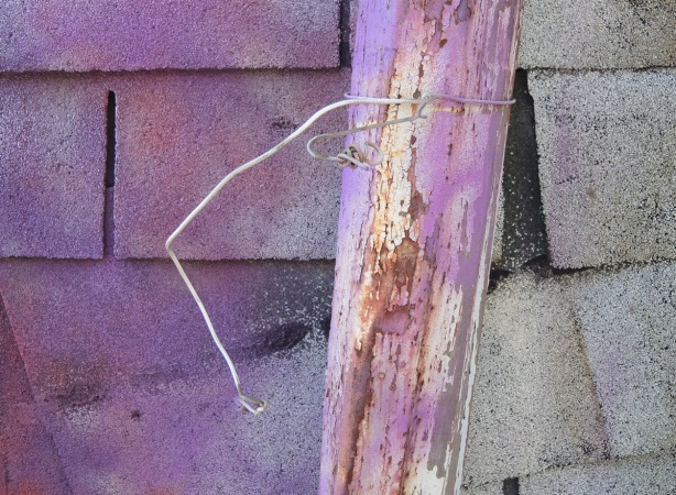 old rusty downspout with part of a wire coat hanger wrapped around ut, in front of a grey shingle covered wall that has been partially covered with purple spray paint