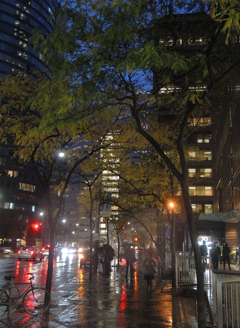 city street on a rainy night, pedestrians on the sidewalk, traffic, trees with autumn foilage, dark blue sky, lights in highrises
