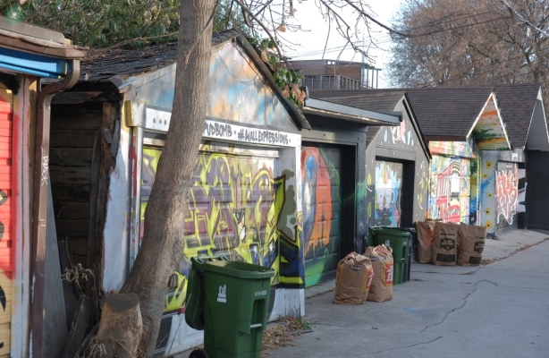 a row of garages with the doors painted with murals, garbage ready for pick up in front of them, in a lane, large tree too