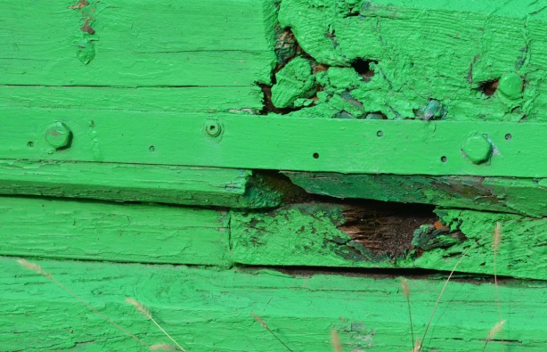 slightly rotting wood painted bright green