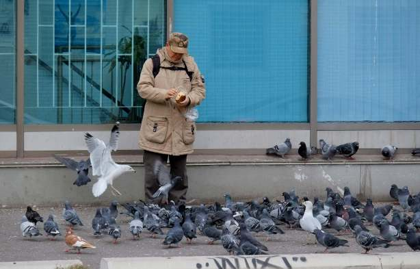a man is feeding pigeons outside on a cold day. He is wearing a heavy coat and a hat.