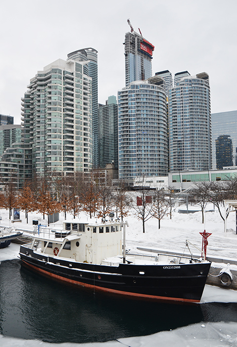 tall ship in harbour, with condos along Queens Quay in the background