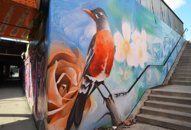 part of a mural, a robin and an orange rose, outside, beside a staircase