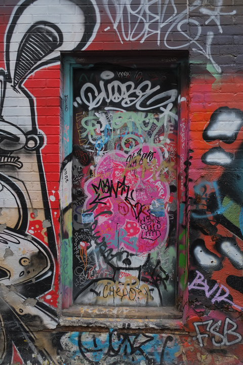 closed door in alley covered with graffiti , framed by other street art and murals