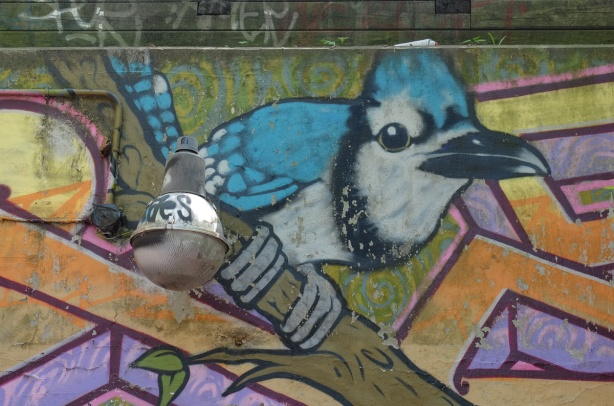street art painting of a blue jay