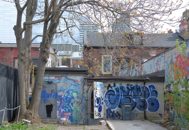 view of the back of stores and residences on Queen street as seen from the street behind, street art and graffiti on the old garages, tree, large buildings in the background.