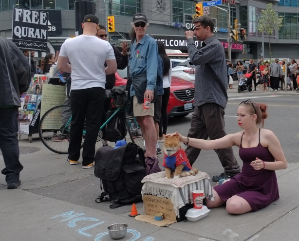 a woman in a purple dress is sitting on the sidewalk, patting the cat wearing the superman costume that is sitting on a box. other people standing around, corner of Yonge and Dundas