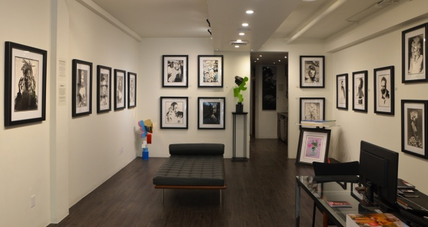 interior shot, Liss Gallery, frames black and white portraits on the walls