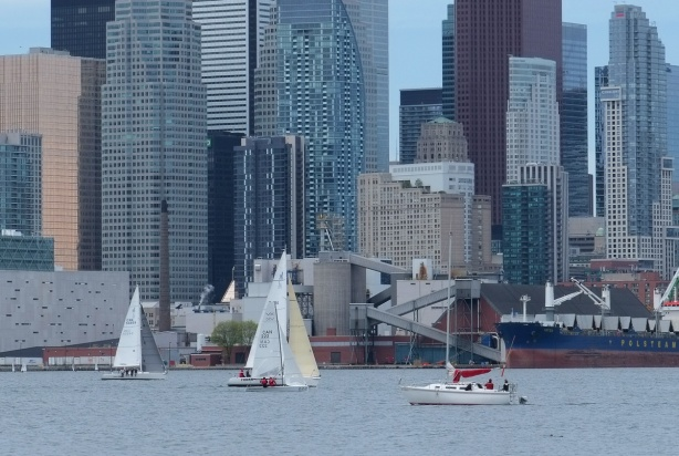 sail boats in Inner Harbour of Lake Ontario, in front of the Toronto skyline with highrises and skyscrapers also ship moored at Redpath Sugar refinery