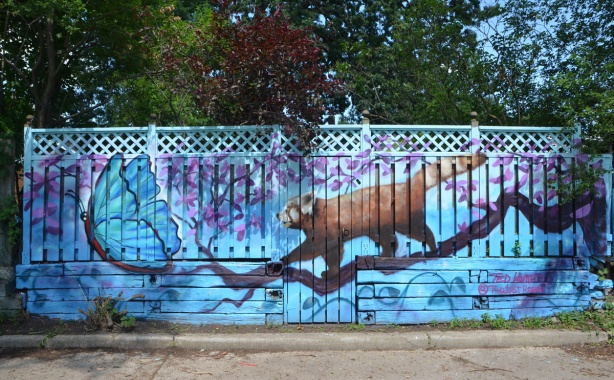 an animal (possum, red panda?), walks out on a tree branch towards a blue butterfly, mural on a fence