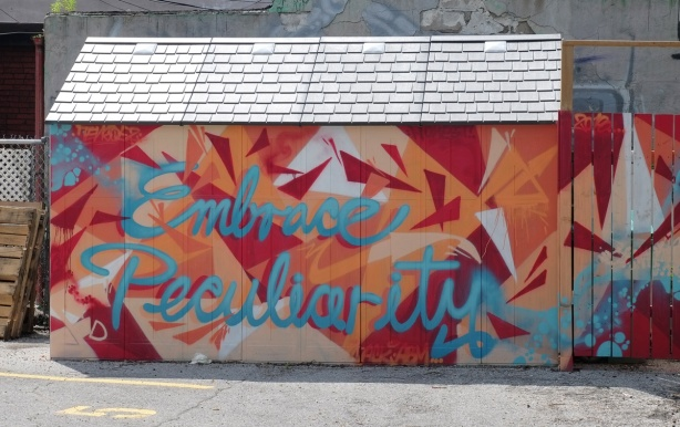 side a garage plus wood fence beside it painted with abstractr shapes in reds and oranges, with the words embrace peculiarity written in blue cursive writing