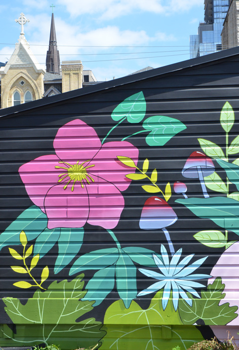 part of a mural by nightarcade, Sarah Cannon, black background, large pink wild rose, striped mushrooms, and lots of green leaves