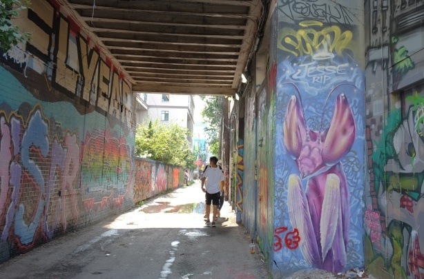 people in graffiti alley with a large pink praying mantis mural