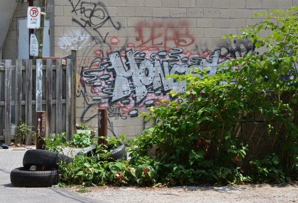 behind a green hedge is a wall with graffiti on it