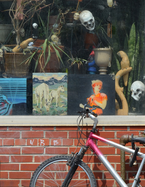 skulls and other things in a shop window, with a bike parked outside