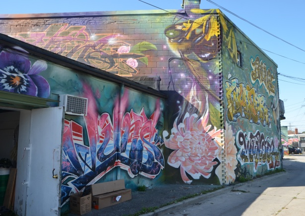 an alley with buildings covered with street art murals, the Gardens of St. Clair project