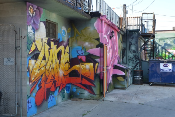 backs of buildings in laneway with murals on them, one is a large pink flower,
