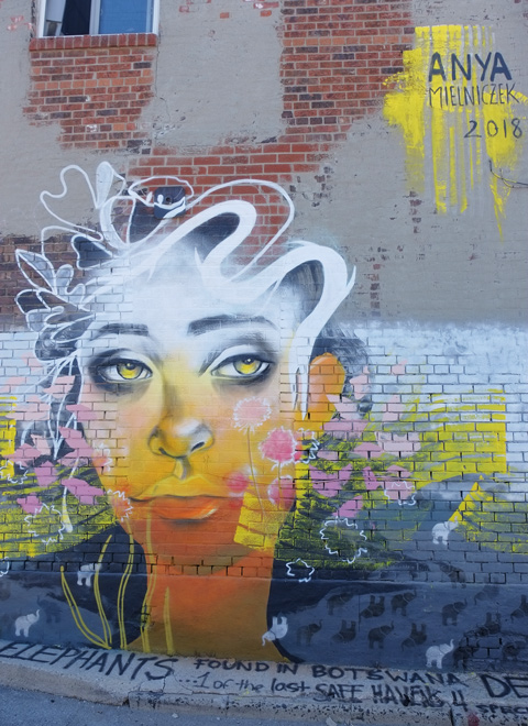 completed mural by anya mielniczek, woman with yellow skina dn eyes and black and white wavy hair,