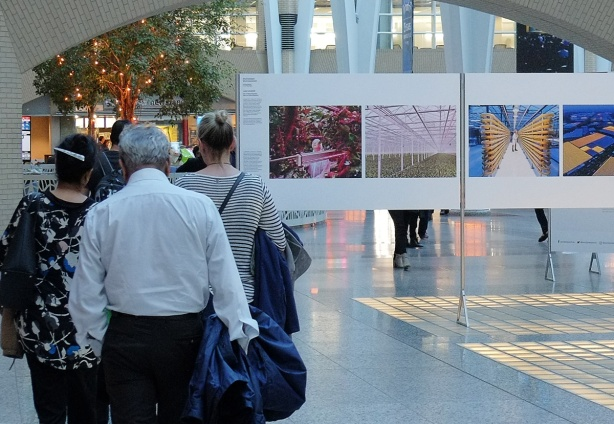 World press photo exhibit at Alan Lambert Galleria, a group of people walk past 4 of the photos from the environmental category, photos taken at an experimental farm in the Netherlands