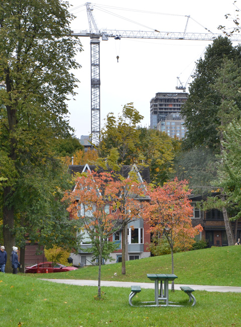 in a park, with picnic bench in the foreground, some people walking on the path, houses on street in middle ground and construction cranes and highrise under construction in the background.