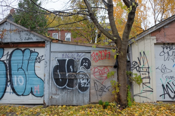 garage doors and fences in an alley, autumn, trees with gold and yellow leaves, as well as leaves on the ground