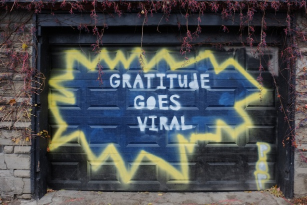 words painted on a garage door that say gratitude goes viral