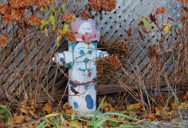 vintage fire hydrant in a front yard, faded painting of a dog on it, face, and some blue spots, cap of hydrant is painted like a fireman's hat.