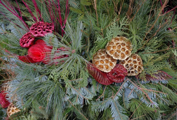 part of an evergreen Christmas decoration with red and gold spray painted pieces