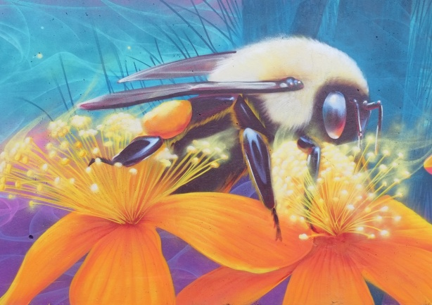 a bee, on two large orange flowers, Nick Sweetman mural
